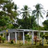 White fence posts, house under constructions, palm trees and vegatation