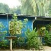 Blue cement house with plants in front