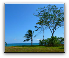View of property and big blue sky with trees and ocean in distance