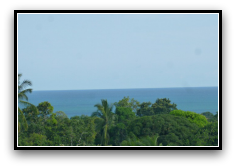 View of Green tree tops, blue ocean and blue sky