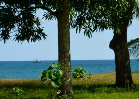 Beachfront-Property-Puerto-Armuelles-COro-L5-6a